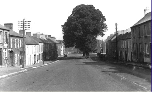 Moira Street with 4 trees